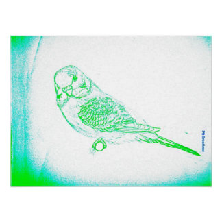 Green Budgie Portrait Poster