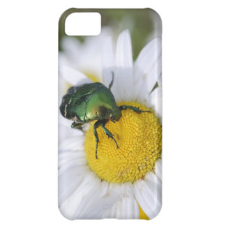 Green bug case for iPhone 5C