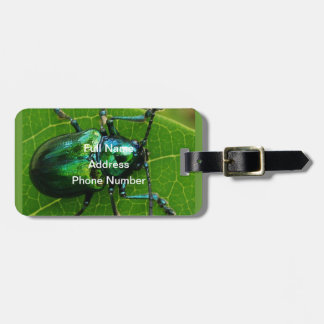 Green bug on green leaf luggage tag
