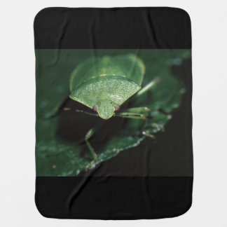 green bug pram blanket
