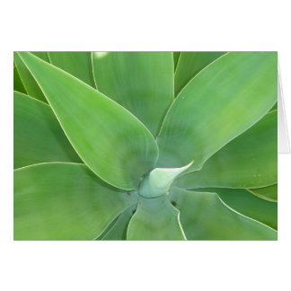 Green Burst v2 Card