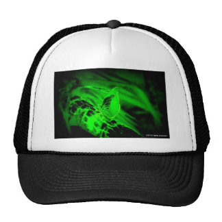 Green Butterfly Hats