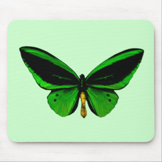 Green Butterfly Mouse Pad