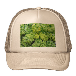 Green cabbage cap