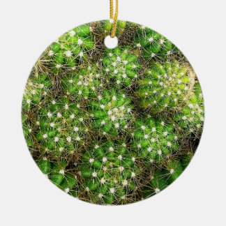 Green Cacti Dble-sided Ornament