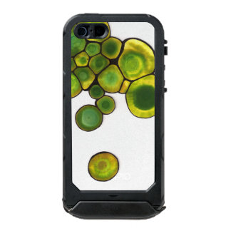 Green Cells Abstract Art Incipio ATLAS ID™ iPhone 5 Case