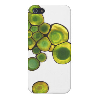 Green Cells Abstract Art iPhone 5 Case