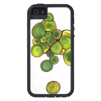 Green Cells Abstract Art iPhone 5 Cases