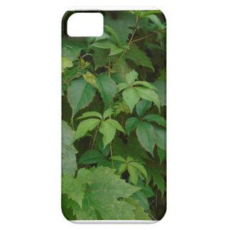 green celtic vine case iPhone 5 cover