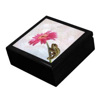 Green chameleon on pink flower large square gift box