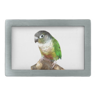Green Cheek Conure Rectangular Belt Buckle