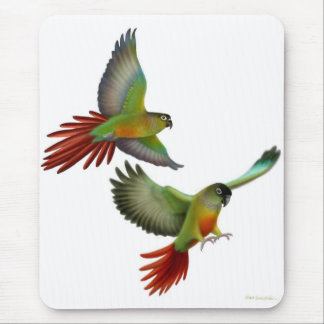 Green Cheek Conures Mousepad