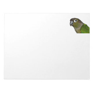 Green Cheeked Conure Notepad