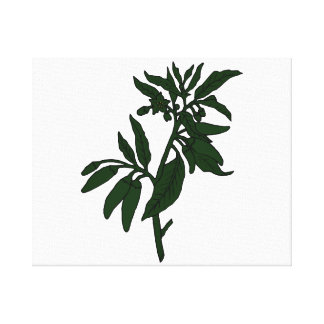 Green chili peppers on dark green plant canvas prints