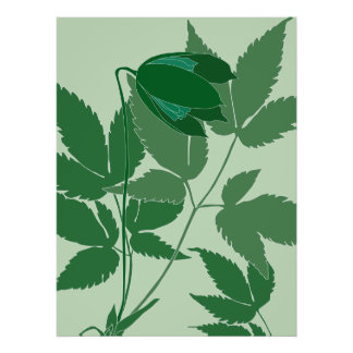 green clematis posters