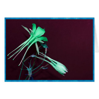 Green columbine flowers card