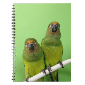 Green Conure Note Book