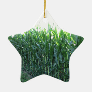 Green corn field on summer day ceramic star decoration
