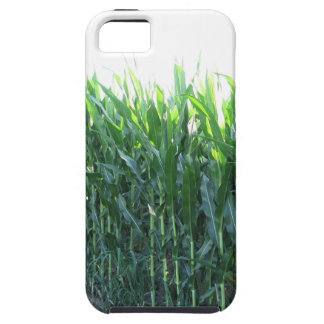 Green corn field on summer day iPhone 5 covers