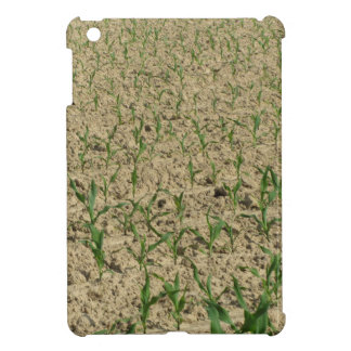 Green corn maize field in early stage iPad mini cover