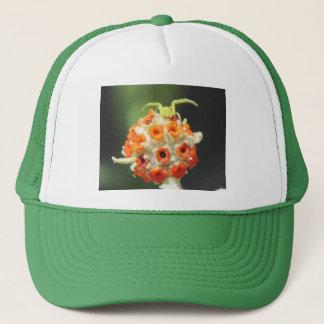Green Crab Spider on Flower Trucker Hat