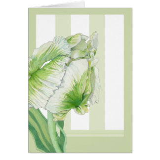 Green Cream Tulip Note Card