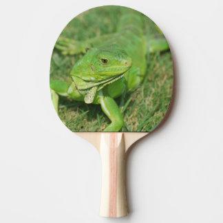 Green Creeping Lizard Ping Pong Paddle