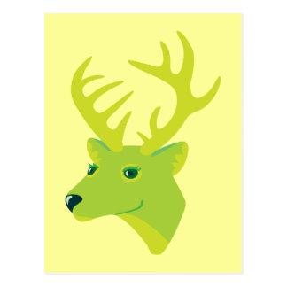 Green Deer Postcard