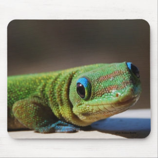 Green Dude Mouse Pad