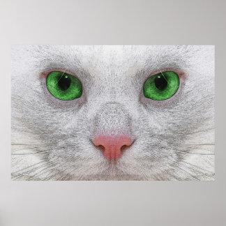 Green Eyed Feline Poster