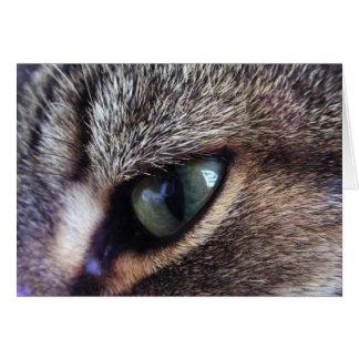 Green-Eyed Gray Tabby Cat Eye Close-Up Card
