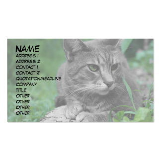Green Eyes Cat Business Cards