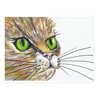 Green Eyes Postcard