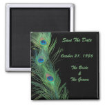 Green Feathers with Black Wedding Save the Date
