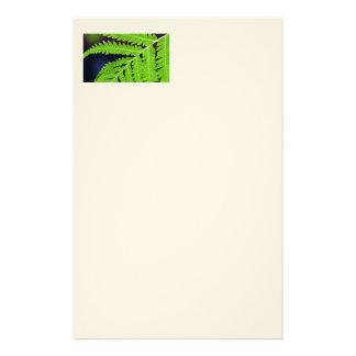 Green Fern Leaf Stationery Paper