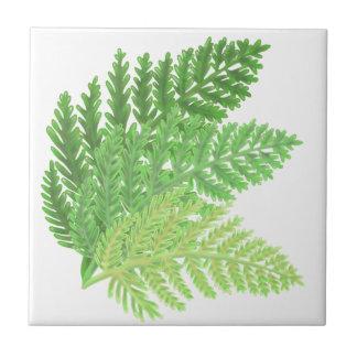 Green Ferns Tile