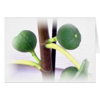 green figs card