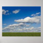 green filed, blue sky, white cloud