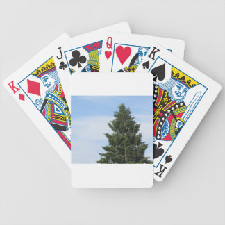 Green fir tree against a clear sky bicycle playing cards