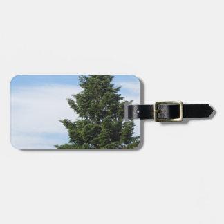 Green fir tree against a clear sky luggage tag