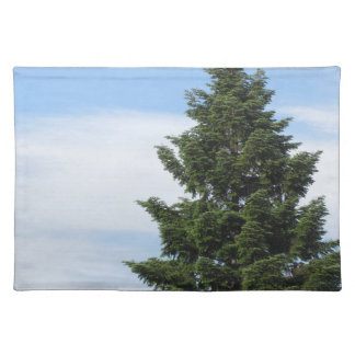 Green fir tree against a clear sky placemat