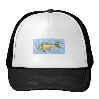 Green Fish In Water Hat