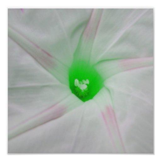 Green Flower Centre Photo Art