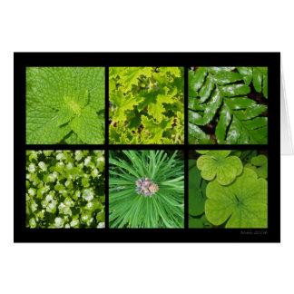 Green Foliage Card