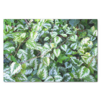 Green Foliage Tissue Paper