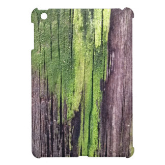 Green for the Holidays iPad Mini Cases