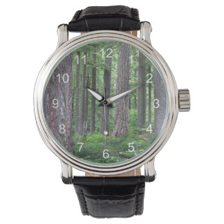 Green Forest Photo Watch