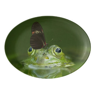 Green Frog and Butterfly Porcelain Serving Platter