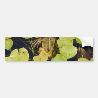 Green frog bumper stickers