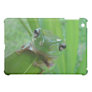 green frog iPad case
